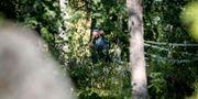 Polisen i Vivalla dagen efter morden, den 4 juli flörra året. PAVEL KOUBEK/TT / TT NYHETSBYRÅN