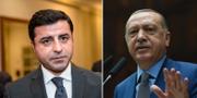 Demirta / Erdogan TT