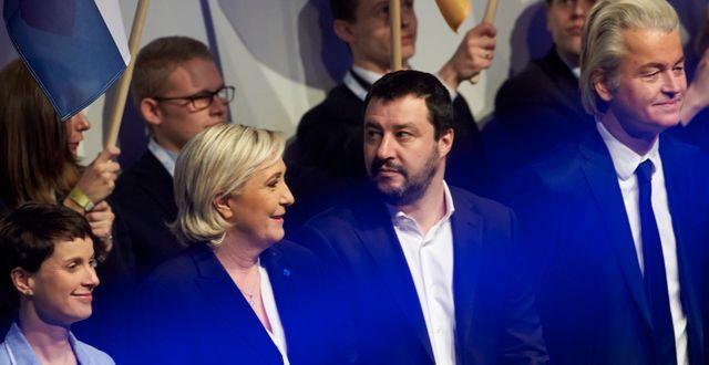 Högerpopulister i Europa. Tyska AFD:s Frauke Petry, Marine le Pen från Front National,  Lega-ledaren Matteo Salvini och nederländska högerpopulisten Geert Wilders, 2017.  Thomas Frey / TT NYHETSBYRÅN