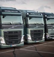 Fredag den 17 juli blir intensiv: Då rapporterar Volvo, Telia, Saab och Ericsson – bland många andra.  TT