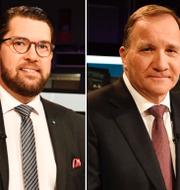 Jimmie Åkesson, Stefan Löfven och Jonas Sjöstedt. TT
