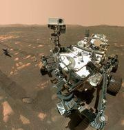 Nasas bilder av Perseverance och helikoptern Ingenuity på Mars.  TT NYHETSBYRÅN