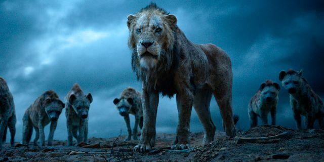 """Ur """"Lion King"""" TT NYHETSBYRÅN/ NTB Scanpix"""