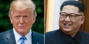 Donald Trump och Kim Jong-Un. Arkivbild. TT