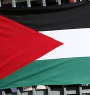 Den palestinska flaggan, illustrationsbild. Fredrik Persson / TT Nyhetsbyrån