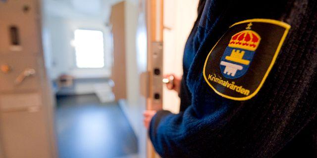 Arkivbild. ADAM IHSE / EXPONERA / TT NYHETSBYRÅN