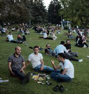 Boende i Ankara har picknick i gräset.  Burhan Ozbilici / TT NYHETSBYRÅN