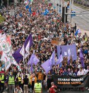 Bild från dagens demonstration Zsolt Szigetvary / TT NYHETSBYRÅN