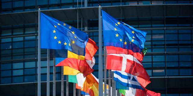 EU-parlamentsvalet  HENRIK MONTGOMERY / TT / TT NYHETSBYRÅN