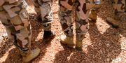 FN-soldater i Mali. Illustrationsbild. Henrik Montgomery/TT / TT NYHETSBYRÅN