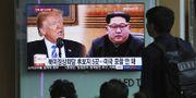 Trump och Kim på tv i Sydkorea. Arkivbild. TT