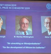 John B. Goodenough, M. Stanley Whittingham and Akira Yoshino. Naina Helén Jåma/TT / TT NYHETSBYRÅN