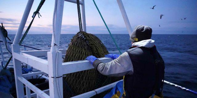 Fisket har blivit en av de stora tvistefrågorna i samtalen. WILLIAM EDWARDS / AFP