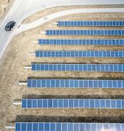 Solceller på rad i en anläggning i Morgongåva Fredrik Sandberg / TT