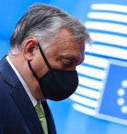 Ungerns premiärminister Viktor Orbán.  Aris Oikonomou / TT NYHETSBYRÅN