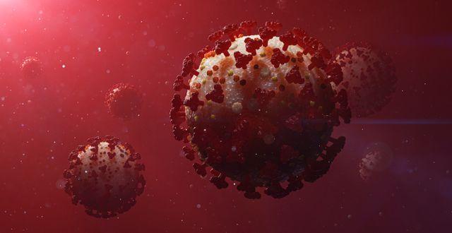Coronaviruset.  Stefan Hörberg/Rithuset AB / TT NYHETSBYRÅN