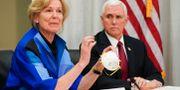Vita husets koordinator för coronaepidemin, Deborah Birx, visar upp en av 3M:s masker för vicepresident Mike Pence. Glen Stubbe / TT NYHETSBYRÅN