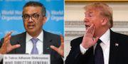 Tedros Adhanom Ghebreyesus/Donald Trump. TT