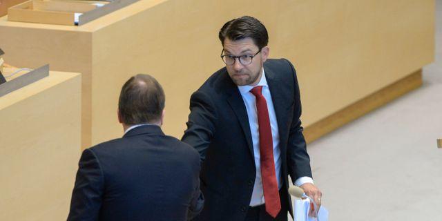 Jimmie Åkesson (SD) tar statsminister Stefan Löfven (S) i hand under partiledardebatten den 10 juni BERTIL ERICSON / TT / TT NYHETSBYRÅN