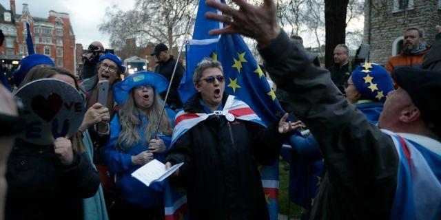Anhängare av en ny folkomröstning utanför parlamentet. Matt Dunham / TT NYHETSBYRÅN