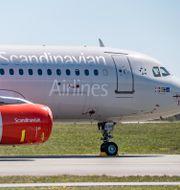 Från den 4 maj återupptar SAS flygningarna mellan Göteborg och Stockholm. Johan Nilsson/TT / TT NYHETSBYRÅN