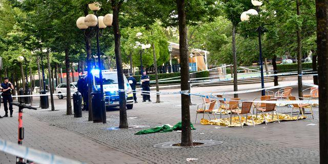 Kungsträdgården.  Maja Suslin / TT / TT NYHETSBYRÅN
