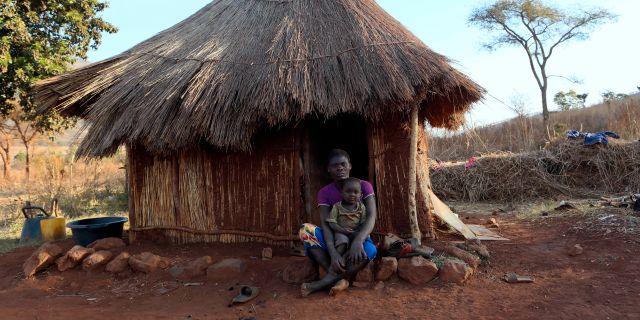 En arbetare på Robert Mugabes gård utanför Harare. Tsvangirayi Mukwazhi / TT NYHETSBYRÅN