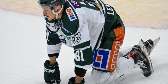 Färjestads Theodor Lennström grinar illa efter en tackling i ryggen. Erland Segerstedt/TT / TT NYHETSBYRÅN