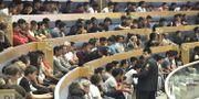 Afghanska flyktingar i riksdagen. Claudio Bresciani/TT / TT NYHETSBYRÅN