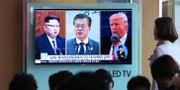 Kim Jong-Un/Moon Jae-In/Donald Trump. Ahn Young-joon / TT / NTB Scanpix
