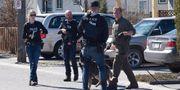Polisinsatsen på platsen. HANDOUT / TT NYHETSBYRÅN