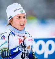 Johanna Hagström, arkivbild. CARL SANDIN / BILDBYRÅN