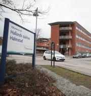 Sjukhuset i Halmstad.  Adam Ihse/TT / TT NYHETSBYRÅN
