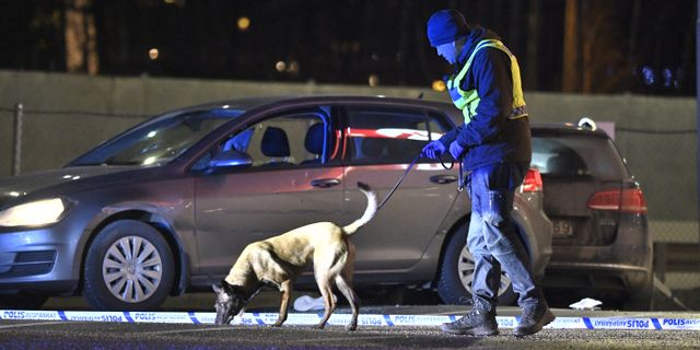 Hundförare på brottsplatsen. Claudio Bresciani/TT / TT NYHETSBYRÅN