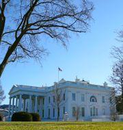 Vita huset i Washington DC. Patrick Semansky / TT NYHETSBYRÅN