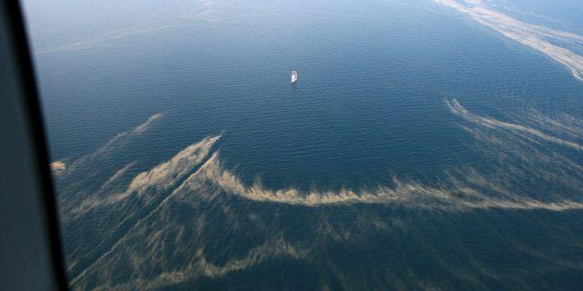 Så här såg det ut i Östersjön under algblomningen 2010. KUSTBEVAKNINGEN / TT / KUSTBEVAKNINGEN