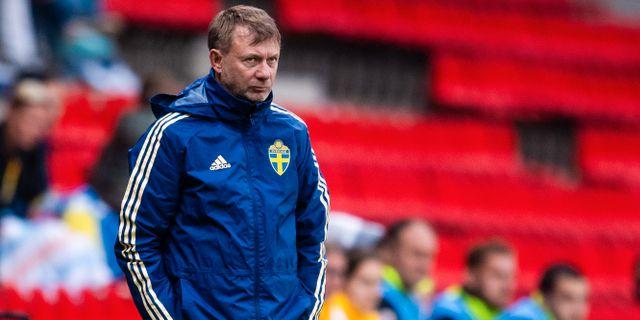 Peter Gerhardsson i regn och rusk. SIMON HASTEGÅRD / BILDBYRÅN