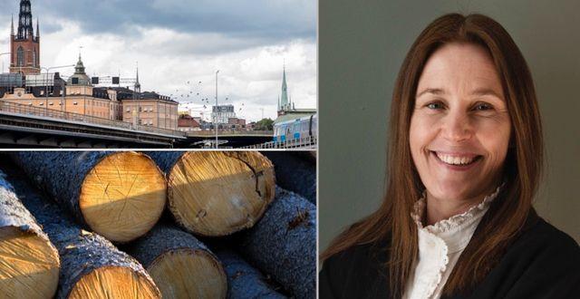 Hemnets vd Cecilia Beck-Friis.  TT, Press