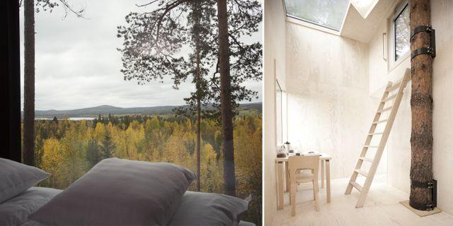 Treehotel i byn Harads utanför Boden. Peter Lundström/WDO