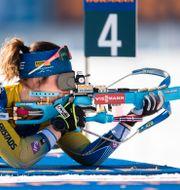 Johanna Skottheim.  JOEL MARKLUND / BILDBYRÅN