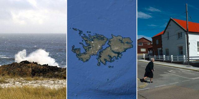 Falklandsöarna.  Wikimedia Commons/Google/TT