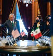 Kamala Harris träffar Mexikos president Andrés Manuel López Obrador på tisdagen. Jacquelyn Martin / TT NYHETSBYRÅN