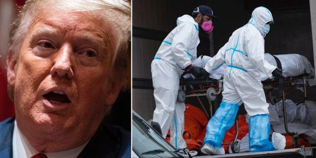 Donald Trump/begravningsarbetare i New York.  TT