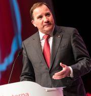 Statsminister Stefan Löfven (S). Filip Erlind/TT / TT NYHETSBYRÅN