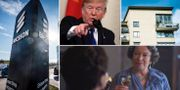 "Arkivbilder: Ericssons huvudkontor, Donald Trump, bostadshus i Stockholm, Marion Bailey som drottning Elizabeth i Netflix-succén ""The crown"". TT"