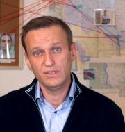 Aleksej Navalnyj. Navalny instagram account / TT NYHETSBYRÅN