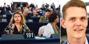 Cecilia Wikström (L) och Christoffer Fjellner (M) i EU-parlamentet. TT