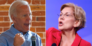 Joe Biden/Elizabeth Warren. TT