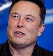 Teslachefen Elon Musk. Arkivbild. Hannibal Hanschke / TT NYHETSBYRÅN