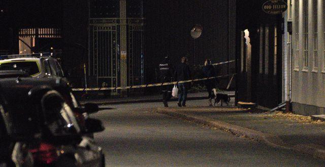 Polisens tekniker undersöker delar av Kongsbergs centrum efter attacken. Terje Pedersen / TT NYHETSBYRÅN
